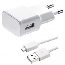 Charger for smartphones Active, USB out, Micro USB cable 1m, 5V, 1A, 1000mAh